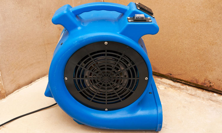 best air movers