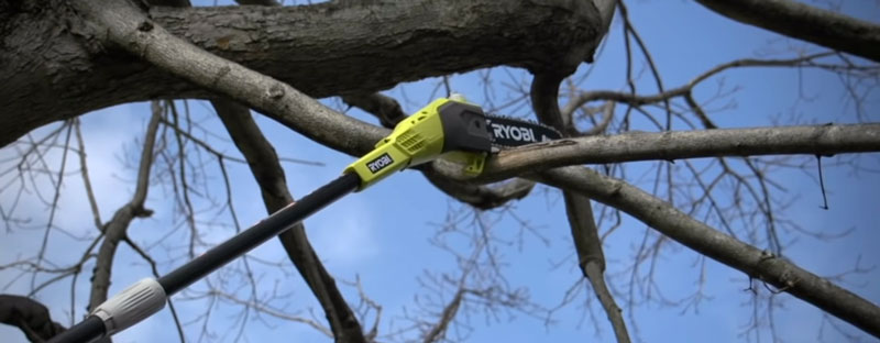 Ryobi pole saw review